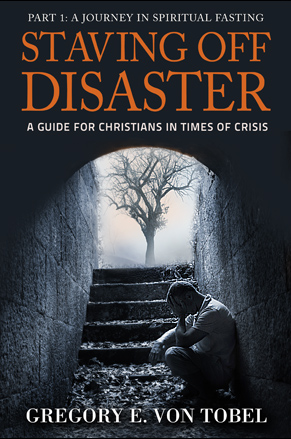 Stavin off disaster - Gregory von tobel
