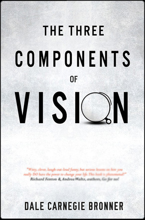 the three components ov vision by Dale Carnagie Bronner